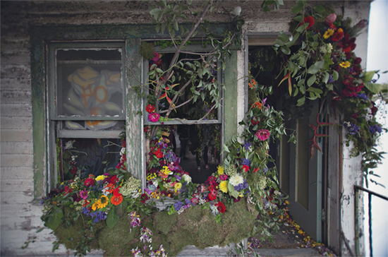 Flower House Windows