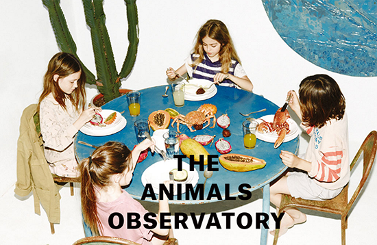 The Animals Obervatory