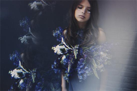 Amy Humphreys Blue Flowers