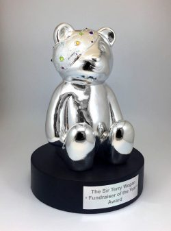 Pudsey Bear by Creative Awards